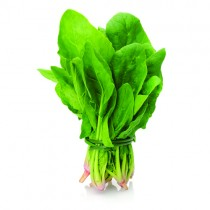 Fresh Pre-packed Spinach *20 Bunch*