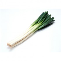 Fresh Spring Onion *14 Bunch*