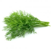 Fresh Dill Box (20 Bunch)
